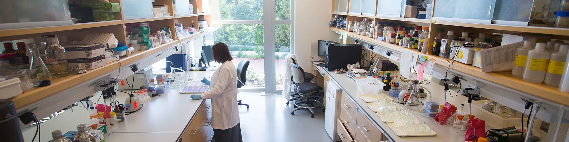 Find A Researcher Header