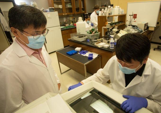 Lim lab grant
