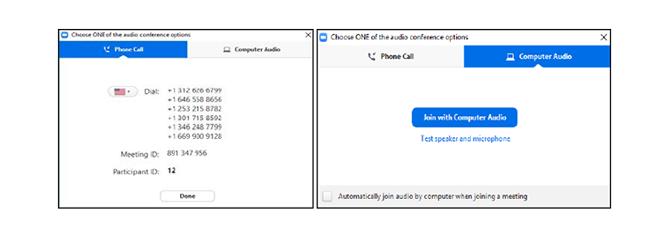 Zoom Audio Choices